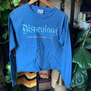Disneyland celebration long sleeve crop top